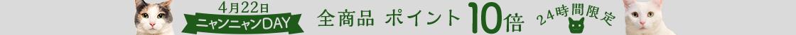 HD【1904-4】22日ニャンニャンデー!