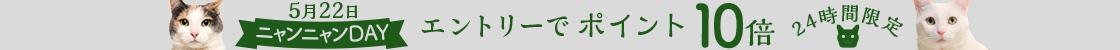 HD【1905-4】22日ニャンニャンデー!
