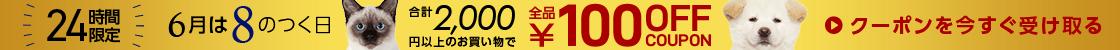 HD【1906-13】8、18、28日は2000円以上100円オフ