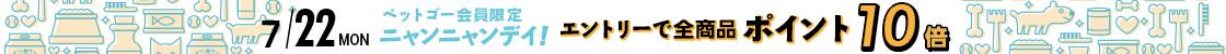 HD【1907-4】22日ニャンニャンデー!