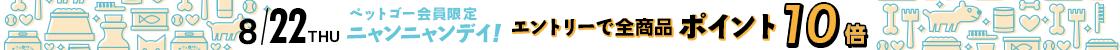 HD【1908-4】22日ニャンニャンデー!24時間ポイント10倍