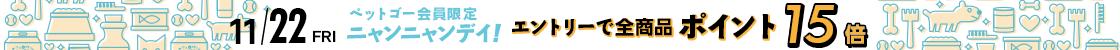HD【1911-04】22日ニャンニャンデー!ポイント15倍