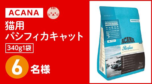 ACANA猫用パシフィカキャットプレゼント