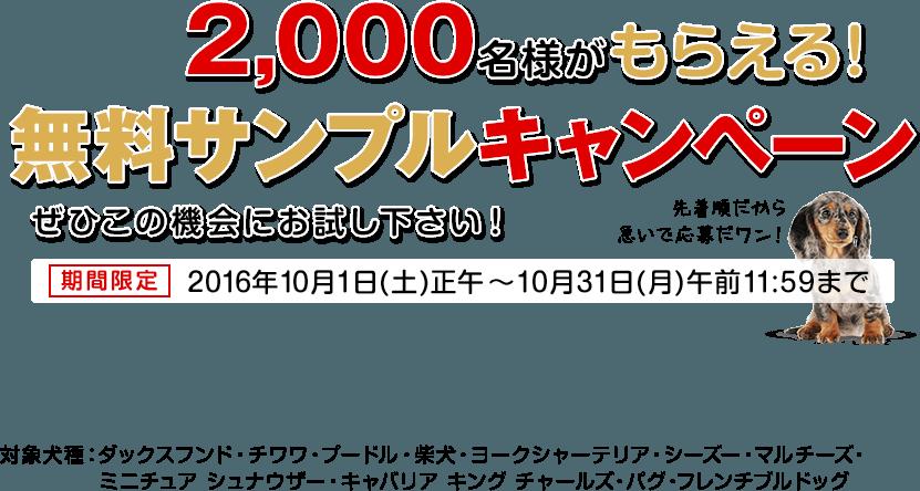 2000名様がもらえる無料サンプルキャンペーン