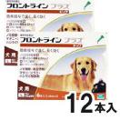 フロントラインプラス 12本入 犬用 L 20~40kg未満