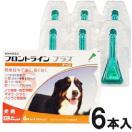 フロントラインプラス 6本入 犬用 XL 40~60kg未満