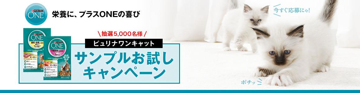 【ピュリナワンキャット】サンプルお試しキャンペーン