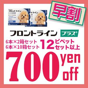 12ピペット以上700円OFF