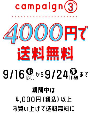 4000円で送料無料