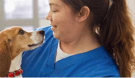 米国の獣医師がNO.1*に推奨