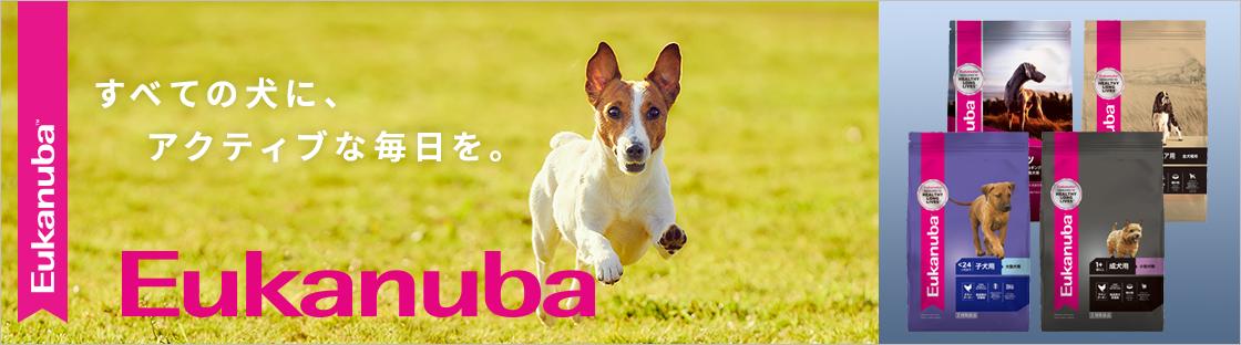 全ての犬にアクティブな毎日を ユーカヌバ