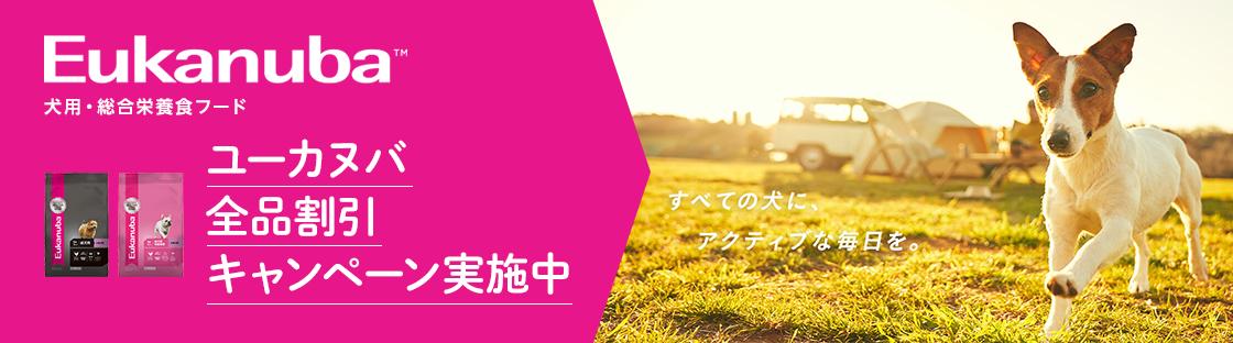 ユーカヌバ全品割引キャンペーン