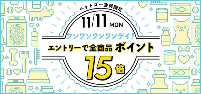 11日はワンワンDAY