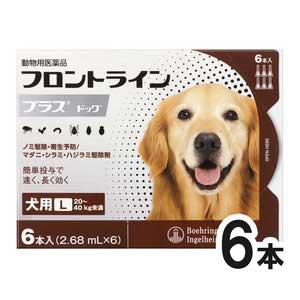 犬用フロントラインプラスドッグL 20kg~40kg 6本(6ピペット)(動物用医薬品)