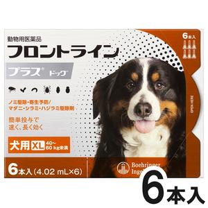 犬用フロントラインプラスドッグXL 40kg~60kg 6本(6ピペット)(動物用医薬品)