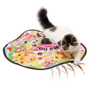 猫壱 キャッチ ミー イフ ユー キャン2