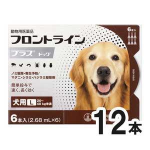 【2箱セット】犬用フロントラインプラスドッグL 20kg~40kg 6本(6ピペット)(動物用医薬品)