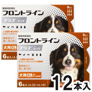 【2箱セット】犬用フロントラインプラスドッグXL 40kg~60kg 6本(6ピペット)(動物用医薬品)