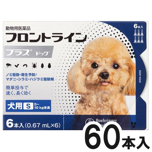 【10箱セット】犬用フロントラインプラスドッグS 5~10kg 6本(6ピペット)(動物用医薬品)