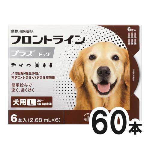 【10箱セット】犬用フロントラインプラスドッグL 20kg~40kg 6本(6ピペット)(動物用医薬品)