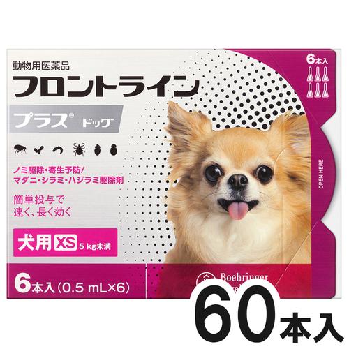 【10箱セット】犬用フロントラインプラスドッグXS 5kg未満 6本(6ピペット)(動物用医薬品)