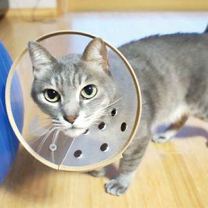 HUMAX ワンツーカラー Cat&ワイド Cat モカ【在庫限り】