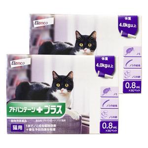 【2箱セット】アドバンテージプラス 猫用 0.8mL 4kg以上 3ピペット(動物用医薬品)