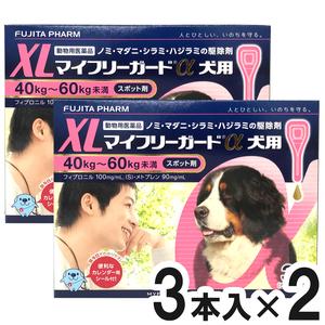 【2箱セット】マイフリーガードα 犬用 XL 40~60kg 3本(動物用医薬品)