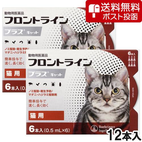 【ネコポス(同梱不可)】【2箱セット】猫用フロントラインプラスキャット 6本(6ピペット)(動物用医薬品)