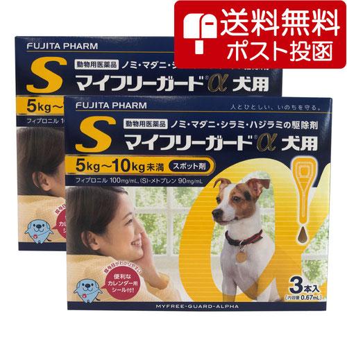 【ネコポス専用】【2箱セット】マイフリーガードα 犬用 S 5~10kg 3本(動物用医薬品)