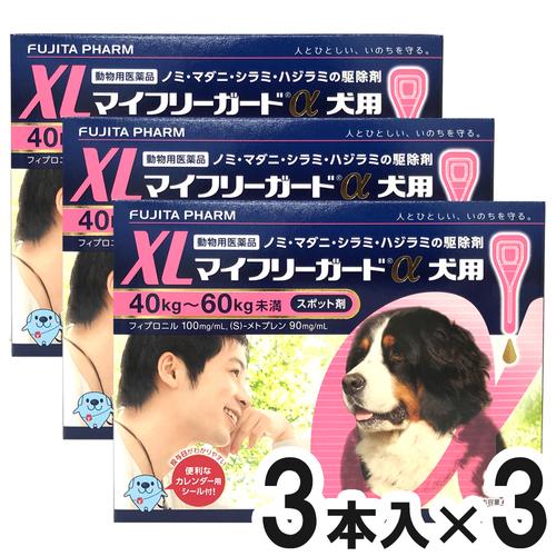 【3箱セット】マイフリーガードα 犬用 XL 40~60kg 3本(動物用医薬品)