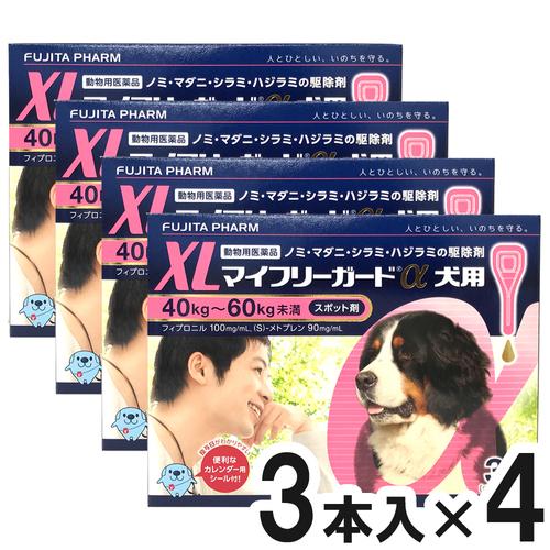 【4箱セット】マイフリーガードα 犬用 XL 40~60kg 3本(動物用医薬品)