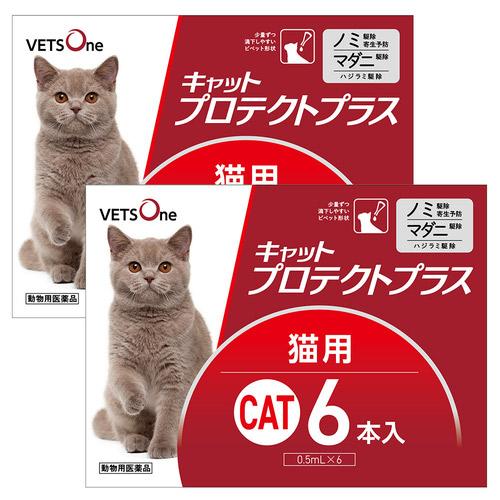 【2箱セット】ベッツワン キャットプロテクトプラス 猫用 6本 (動物用医薬品)