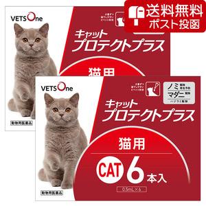 【ネコポス(同梱不可)】【2箱セット】ベッツワン キャットプロテクトプラス 猫用 6本 (動物用医薬品)