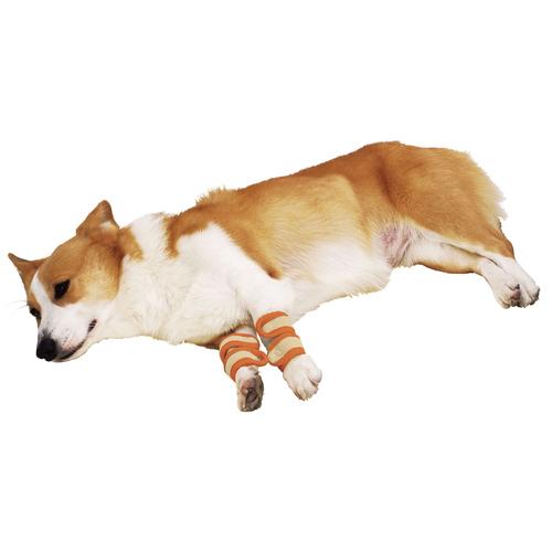 ペティオ zuttone(ずっとね) 老犬介護用 床ずれ予防サポーター 中 4個入