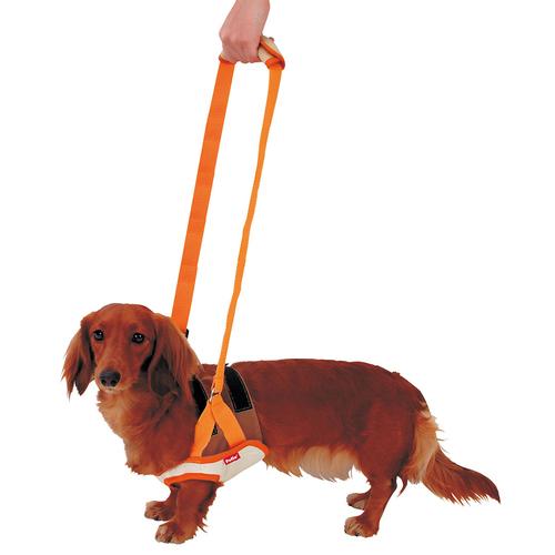 ペティオ zuttone(ずっとね) 老犬介護用 歩行補助ハーネス 前足用 M