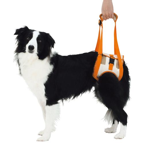 ペティオ zuttone(ずっとね) 老犬介護用 歩行補助ハーネス 後足用 2L