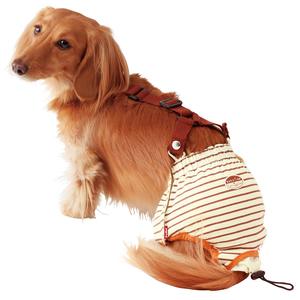 ペティオ zuttone(ずっとね) 老犬介護用 おむつパンツ M