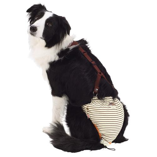 ペティオ zuttone(ずっとね) 老犬介護用 おむつパンツ 2L