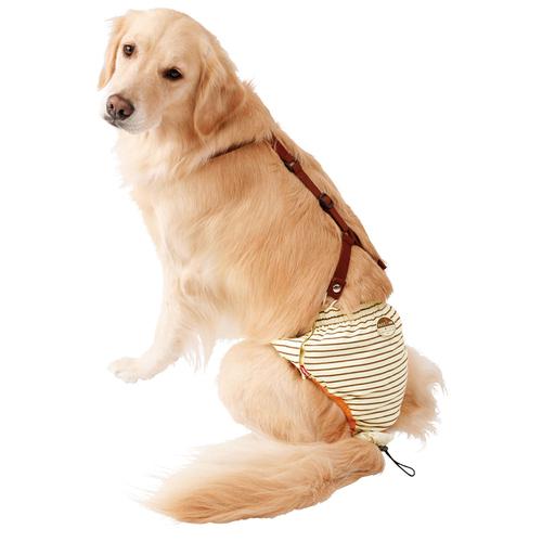 ペティオ zuttone(ずっとね) 老犬介護用 おむつパンツ 3L