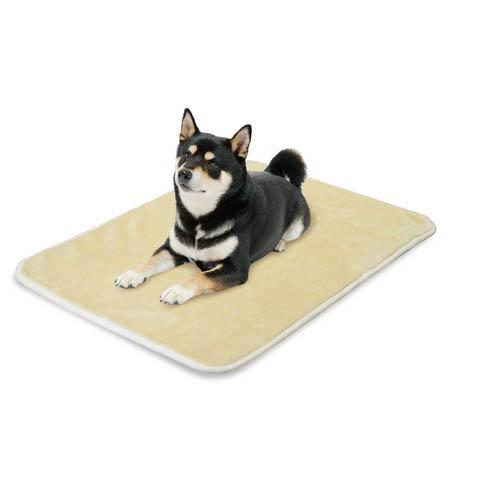 ドギーマン プレミアムリッチ毛布 L 犬猫用【数量限定】