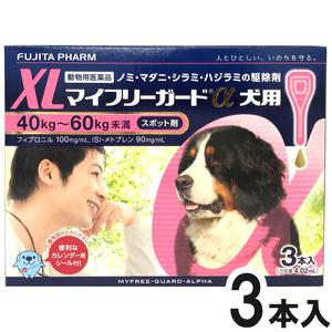マイフリーガードα 犬用 XL 40~60kg 3本(動物用医薬品)