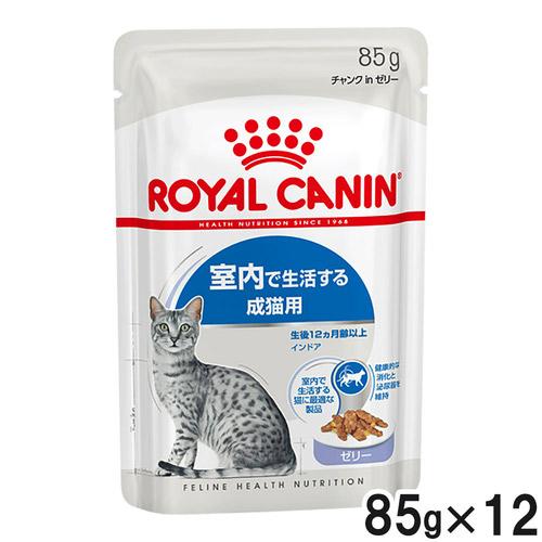 ロイヤルカナン FHN ウェット インドア 室内で生活する成猫用 ゼリー 85g×12【まとめ買い】